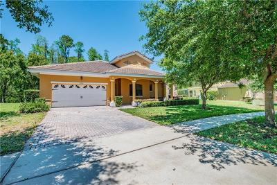Kissimmee Single Family Home For Sale: 9051 Paolos Place