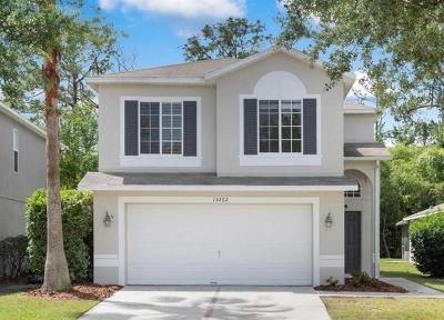 Winter Garden Rental For Rent: 15262 Black Lion Way