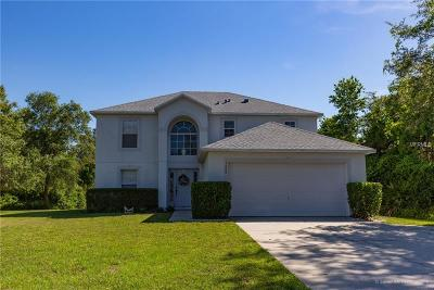 Deltona  Single Family Home For Sale: 1648 Fort Smith Boulevard