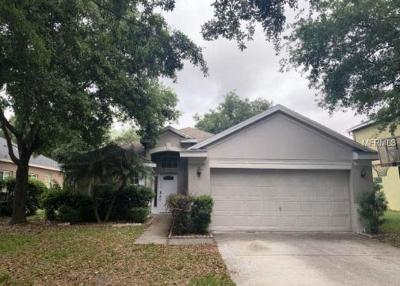 Tampa Townhouse For Auction: 19140 Dove Creek Drive