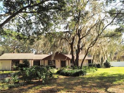Fruitland Park Single Family Home For Sale: 4329 Emmaus Road