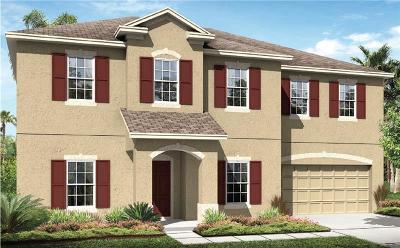 Saint Cloud Single Family Home For Sale: 5360 Ragusa Loop