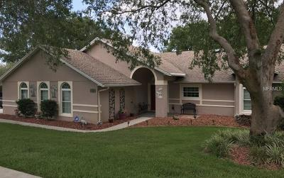Clermont Single Family Home For Sale: 8800 Spyglass Loop
