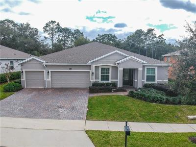 Deland Single Family Home For Sale: 324 W Victoria Trails Boulevard