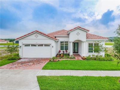 Lake County, Orange County, Osceola County, Seminole County Single Family Home For Sale: 2371 Symphony Circle