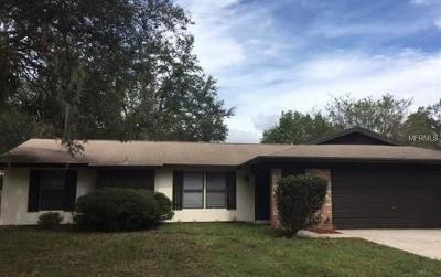 Brandon FL Single Family Home For Sale: $187,800