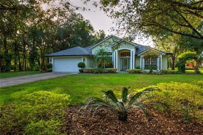 Deland Single Family Home For Sale: 1750 S Florida Avenue