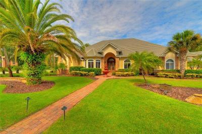 Ormond Beach Single Family Home For Sale: 3528 Kilgallen Court E