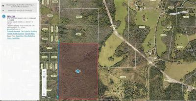 Clermont Residential Lots & Land For Sale: S Fork Ranch Drive