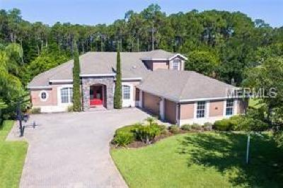 Orlando Single Family Home For Sale: 2914 Lee Shore Loop