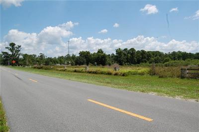 Sorrento Residential Lots & Land For Sale: 31734 Wekiva River Road