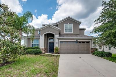 Mount Dora Single Family Home For Sale: 5845 Tarleton Way