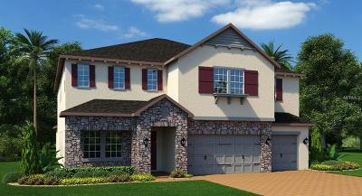 Winter Garden FL Single Family Home For Sale: $549,990