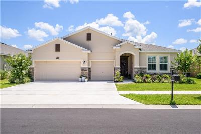Deland Single Family Home For Sale: 625 Bluehearts Trail
