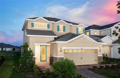 Hillsborough County Single Family Home For Sale: 7212 Paradiso Drive