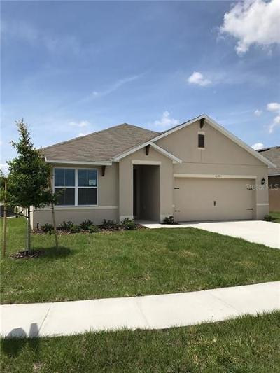 Winter Haven Single Family Home For Sale: 5162 Michelle Street