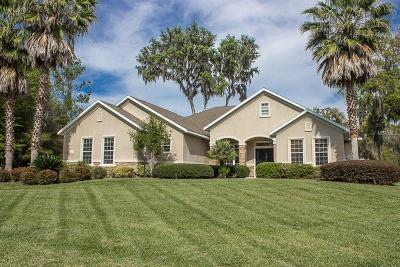 Ocala Single Family Home For Sale: 4219 SE 8th Avenue