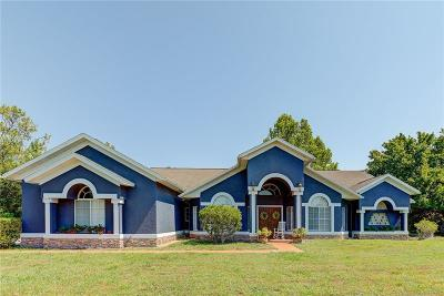 Orlando Single Family Home For Sale: 8931 Curry Ford Road