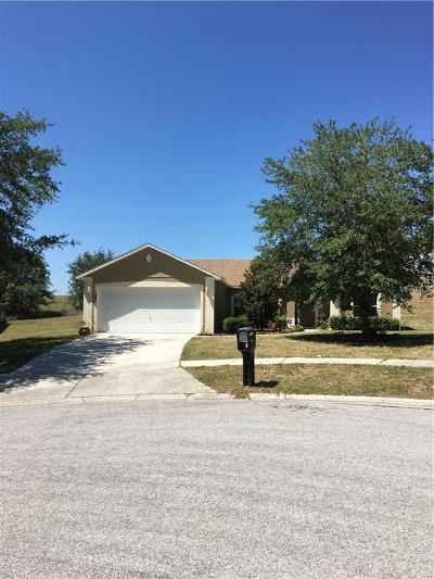 Minneola Single Family Home For Sale: 106 Carlyle Street