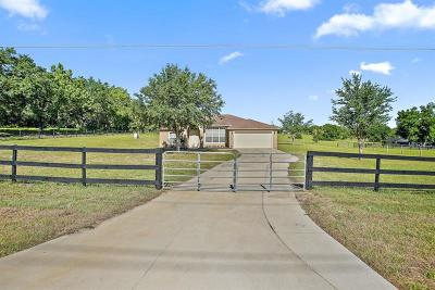 Clermont Single Family Home For Sale: 21215 S Buckhill Road