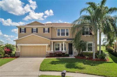 Orlando, Orlando (edgewood), Orlando`, Oviedo, Winter Park Single Family Home For Sale: 13318 Halkyn Point