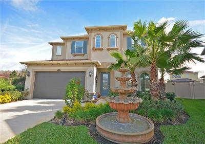 Wesley Chapel Single Family Home For Sale: 4068 Empoli Court
