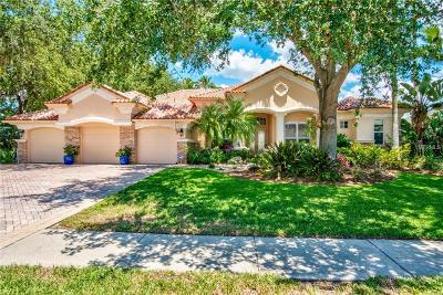 Palm Harbor Single Family Home For Sale: 3983 Moreno Drive
