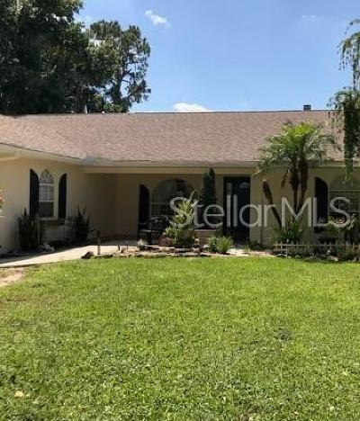 Highlands County Single Family Home For Sale: 84 Mandolin Drive