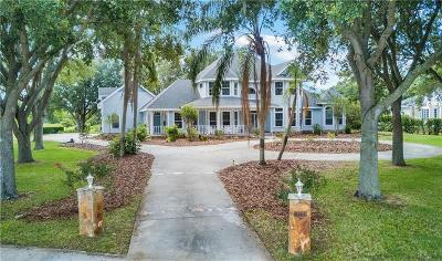 Winter Garden Single Family Home For Sale: 17732 Deer Isle Cir