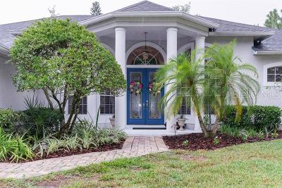 Oviedo Single Family Home For Sale: 1693 Carillon Park Drive