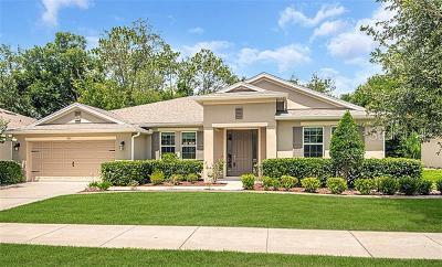 Deland Single Family Home For Sale: 307 Maple Sugar Drive