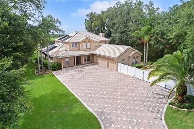 Kissimmee Single Family Home For Sale: 1664 Marina Lake Drive