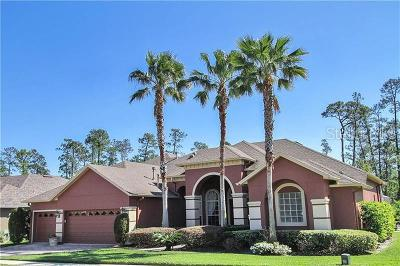 Oviedo Single Family Home For Sale: 2885 Aloma Lake Run