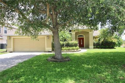 Clermont Single Family Home For Sale: 10244 Dovehill Lane