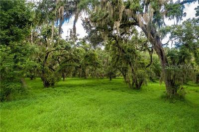 Mount Dora Residential Lots & Land For Sale: Oak Shadow Lane