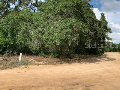 Groveland Residential Lots & Land For Sale: Bailey Palm Drive
