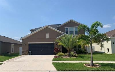 Riverview Single Family Home For Sale: 11811 Winterset Cove Drive