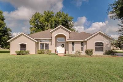 Tavares Single Family Home For Sale: 30937 Fairvista Drive