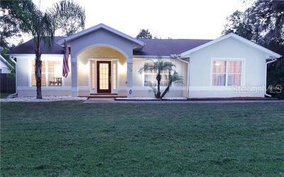 Debary Single Family Home For Sale: 222 Agua Vista Street