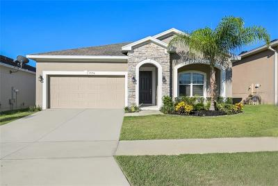 Clermont Single Family Home For Sale: 17196 Gathering Place Circle