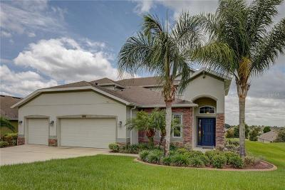 Clermont Single Family Home For Sale: 12525 Hammock Pointe Circle