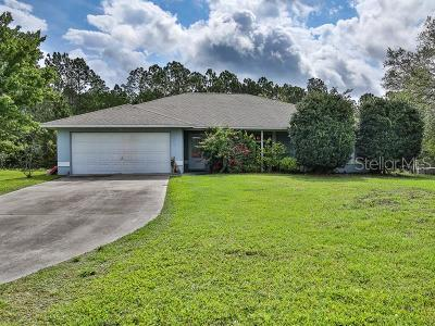 New Smyrna Beach Single Family Home For Sale: 889 Tater Road