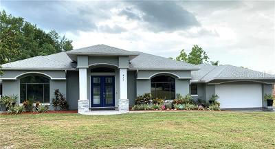 Deltona  Single Family Home For Sale: 411 Sandy Lane