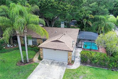 Palm Harbor Single Family Home For Sale: 214 Maple Avenue
