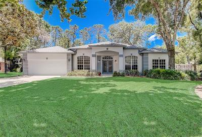 Ormond Beach Single Family Home For Sale: 4 Pleasantwood Way