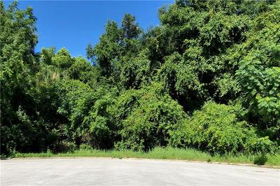 Mount Dora Residential Lots & Land For Sale: 6625 Sinisi Drive