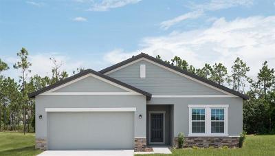 New Smyrna Beach Single Family Home For Sale: 3026 Gibraltar Boulevard