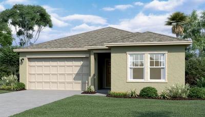 New Smyrna Beach Single Family Home For Sale: 3028 Gibraltar Boulevard