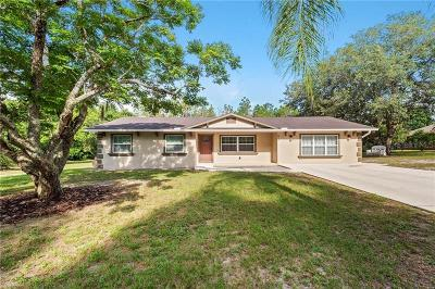 Mount Dora Single Family Home For Sale: 5800 Terrell Road