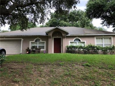 Minneola Single Family Home For Sale: 945 Jayhil Drive